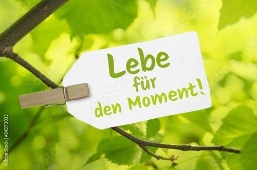 Fotografie, Obraz  Leben - Konzept Plakette in der Natur