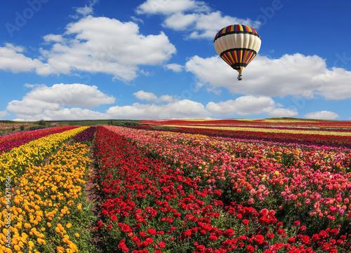 In de dag Ballon Spring windy day