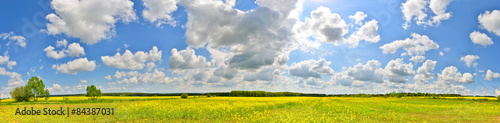 Poster Village Panorama of flower field in spring countryside