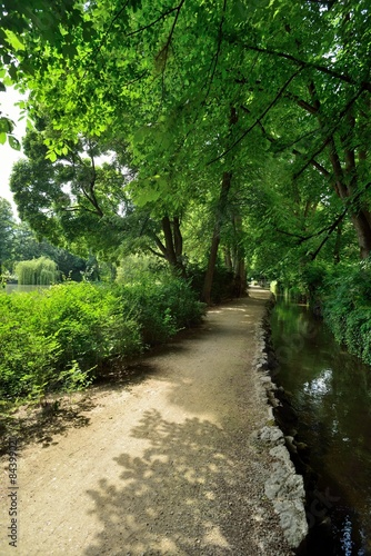 Foto op Canvas Weg in bos Weg unter Bäumen neben Bach in Park