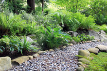 Woodland Shade Garden Path
