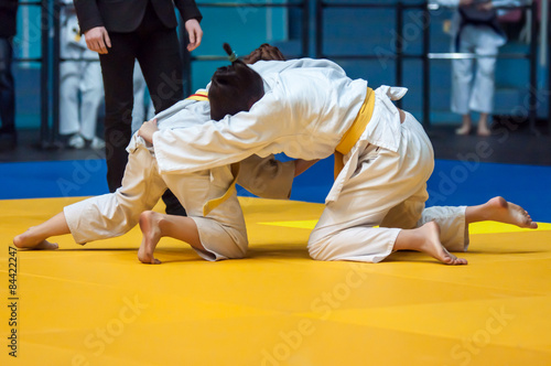 Girls in Judo Poster