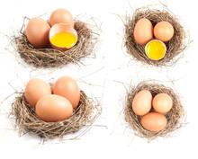 Chicken Eggs In The Nest Of Straw.