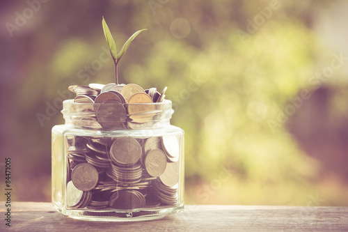 Fotografie, Obraz  plant growing out of coins with filter effect retro vintage style
