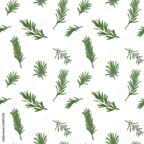 Rosemary seamless pattern Wallpaper Mural