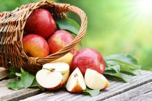 Äpfel Im Körbchen Mit Sonne, Copy Space
