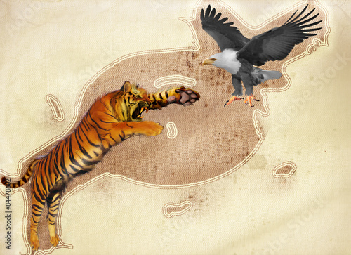 Fotografie, Obraz  Tiger And Eagle
