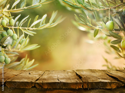 Foto op Aluminium Olijfboom Olive trees with tabletop