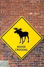 Moose Crossing Sign On Brick Wall