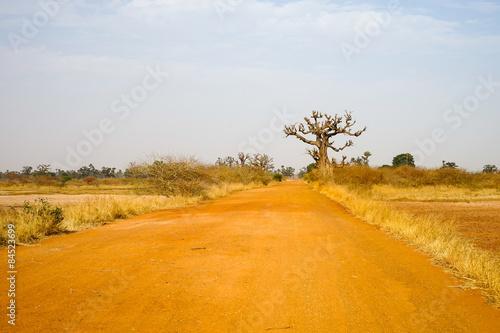 Poster Baobab Rred road to Samba Dia