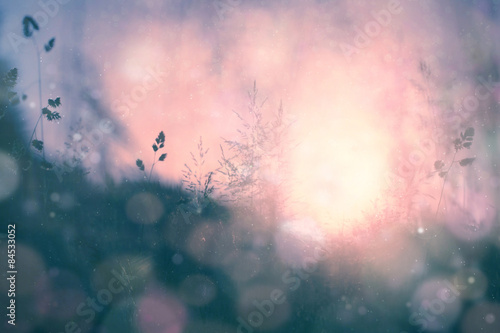 fantasy-sunset-bokeh-blurred-meadow-background