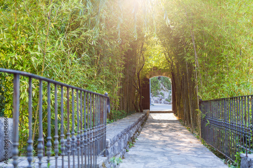 Papiers peints Bambou Bamboo walkway entrance to the park