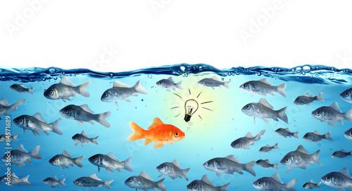 Fotomural against the stream - opposite concept - leader goldfish