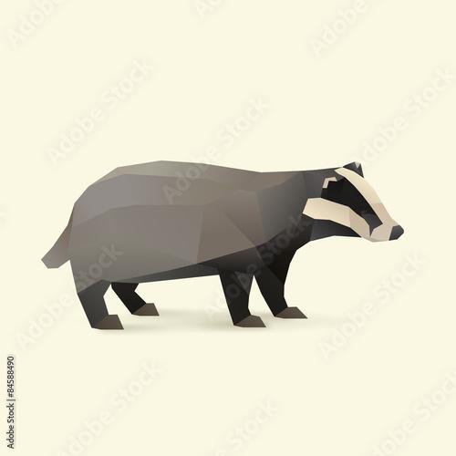 Fotomural badger