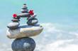zen taşları
