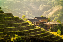 Longji Rice Terraces China