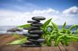 Spa Treatment, Health Spa, Bamboo.