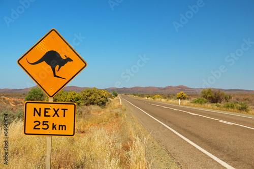 In de dag Australië Kangaroos on the road