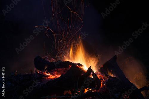 Poster de jardin Vache feu de bois