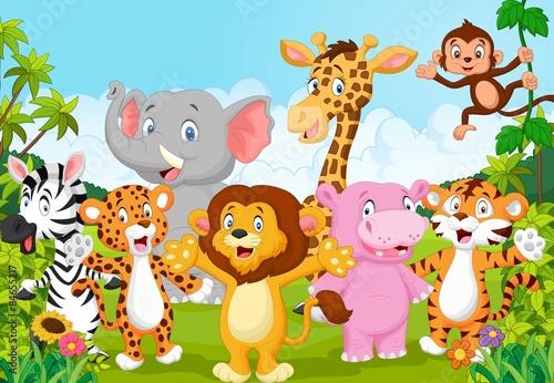 kolekcja-kreskowka-zwierzat-afryki-w-dzungli