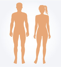 Man And Woman Body Template. V...