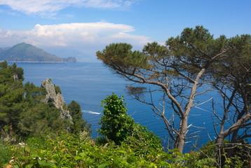 Fototapeta na wymiar Inselparadies-I-Capri-Italien