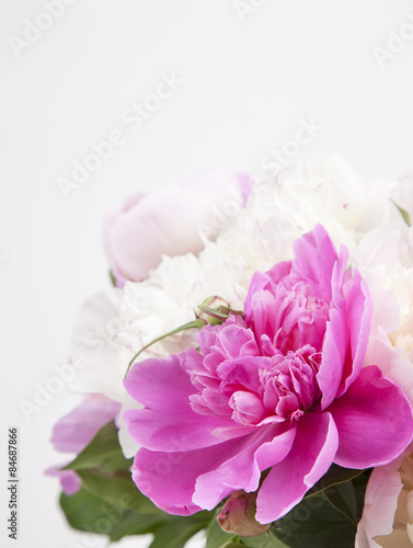 Beautiful bouquet of pink and white peonies Canvas