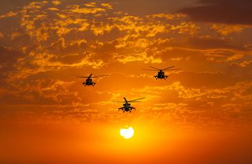 FototapetaGroup combat helicopters, Mi-24, Mi-8, warm sunset