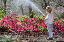Cute Little Girl Watering Flow...
