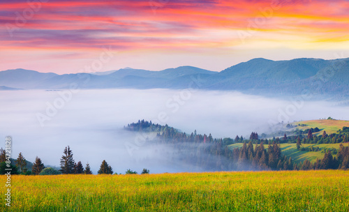 Foto auf Gartenposter Hugel Colorful summer sunrise in the foggy Carpathian mountains