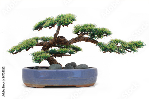 Spoed Foto op Canvas Bonsai Bonsaï factice / Dummy bonsai