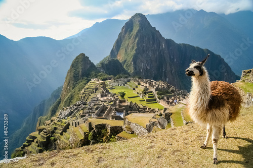 Foto op Canvas Lama Lama And Machu Picchu