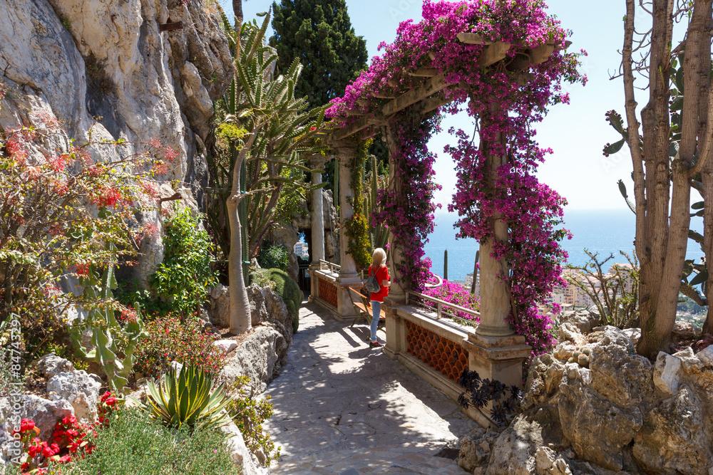 Exotischer Garten Von Monaco Foto Poster Wandbilder Bei Europosters