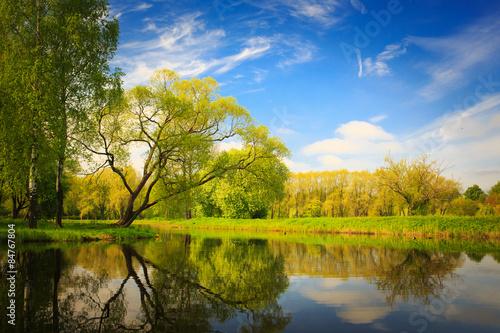 Fototapeta park landscape obraz na płótnie