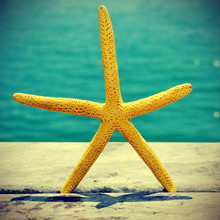 Starfish On An Old Wooden Pier On The Sea, With A Retro Effect