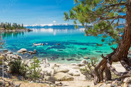 Photo Stands Chocolate brown Lake Tahoe