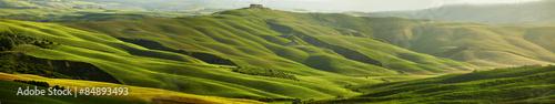 Green Tuscany hills - panorama - 84893493