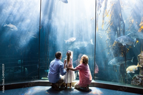 Wear view of family looking at fish tank