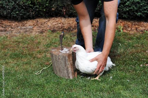 Valokuva  Mann bereitet Huhn für Schlachtung vor
