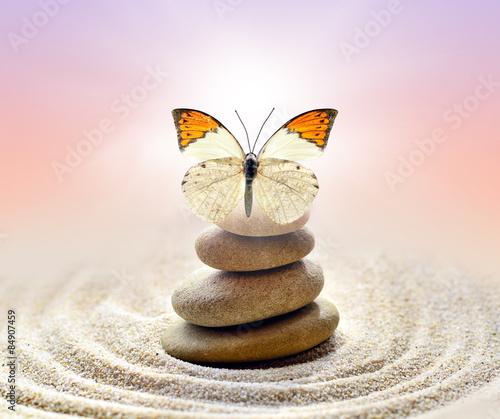 Deurstickers Stenen in het Zand Butterfly and stones balance