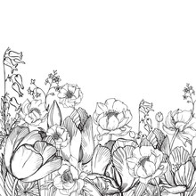 Vector Elegance Floral Background With Graphic Spring Flowers