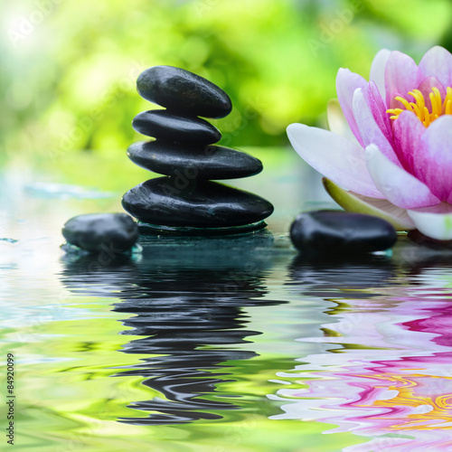 Photo Stands Water lilies Hot Rocks - Wärmemassage