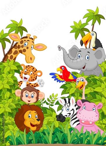 kolekcja-kreskowka-szczesliwe-zwierze-w-dzungli