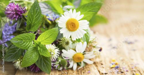 Fotografía  Healing Herbs