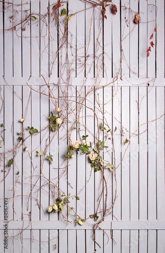 bialy-drewniany-plot-spleciony-z-rozami