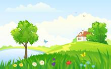 Summer Rural Day