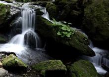 Waterfalls In Nature Reserve White Opava, Nearby Spa Town Karlova Studanka