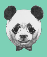 Obraz na SzkleHand drawn portrait of Panda with glasses and bow tie. Vector isolated elements.