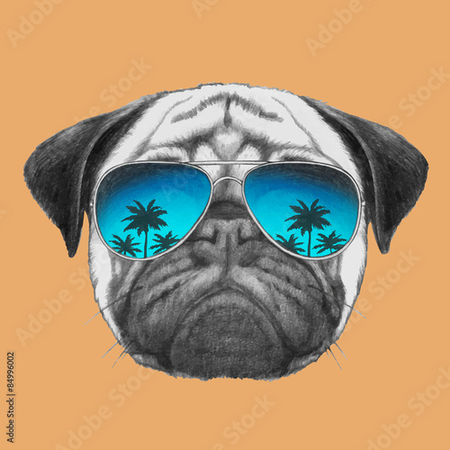 Hand drawn portrait of Pug Dog with mirror sunglasses Canvas Print