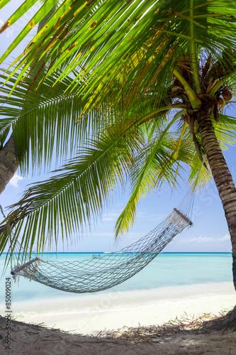hamak-pomiedzy-palmami-na-pieknej-tropikalnej-wyspie